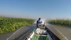 Recorrido en barca por el Lago Inle