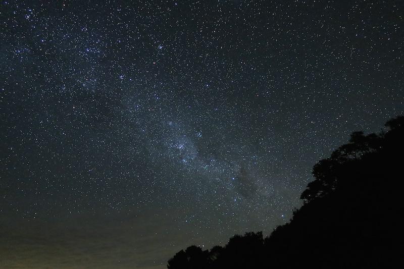 estrellas en nueva zelanda
