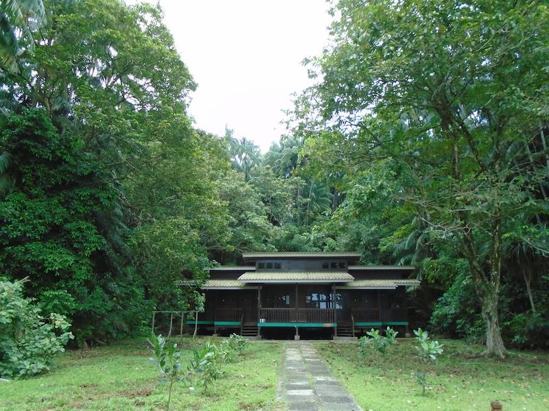 Nuestras cabañas en el Bako