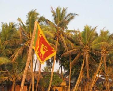Ruta para conocer Sri Lanka en 15 días