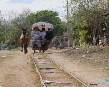 Cuzamá: descubre los cenotes en burro-tren
